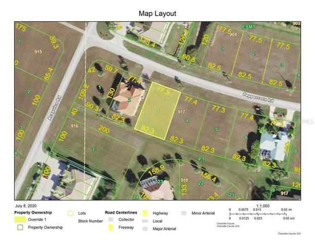 24025 Peppercorn Road, Punta Gorda, FL 33955 (MLS #C7430768) :: Premium Properties Real Estate Services