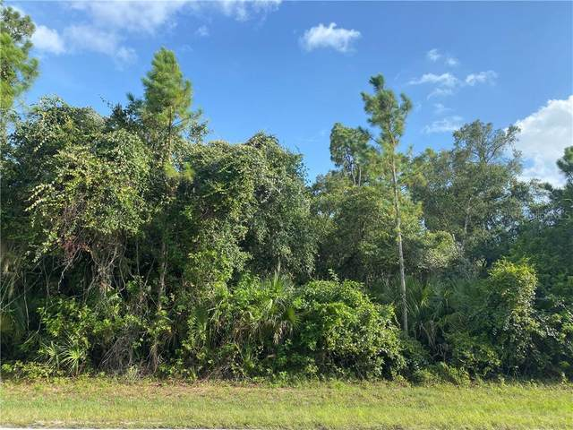 18375 & 18383 Hillsborough Boulevard, Port Charlotte, FL 33954 (MLS #C7430845) :: Heckler Realty
