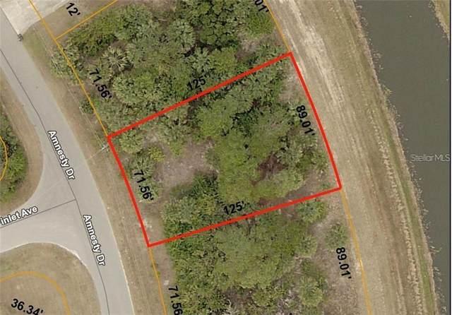 Amnesty Drive, North Port, FL 34288 (MLS #C7431135) :: Team Bohannon Keller Williams, Tampa Properties