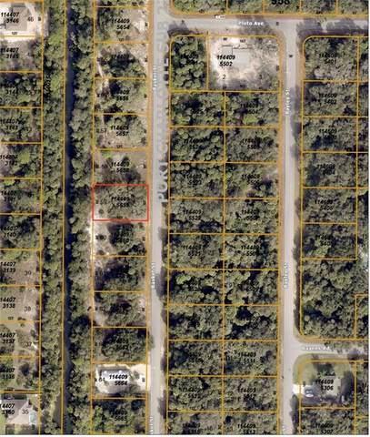 Basket Street, North Port, FL 34288 (MLS #C7431314) :: Cartwright Realty