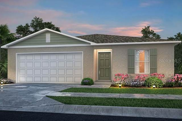 1219 Tyler Avenue, Spring Hill, FL 34606 (MLS #C7431554) :: The Duncan Duo Team