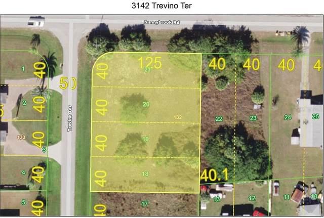 3142 Trevino Terrace, Punta Gorda, FL 33983 (MLS #C7431668) :: Godwin Realty Group