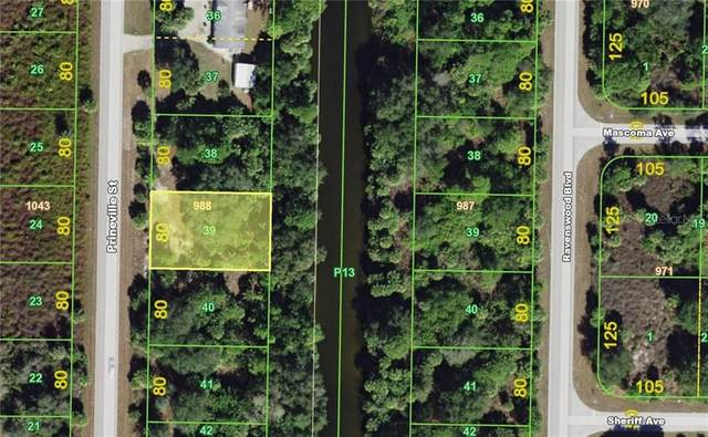 312 Prineville Street, Port Charlotte, FL 33954 (MLS #C7431861) :: Griffin Group