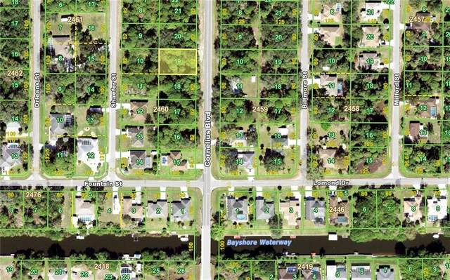 359 Cornelius Boulevard, Port Charlotte, FL 33953 (MLS #C7432409) :: Rabell Realty Group