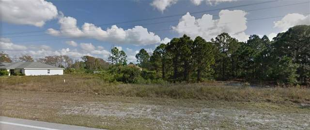 789 Homestead Road S, Lehigh Acres, FL 33974 (MLS #C7432440) :: Bustamante Real Estate
