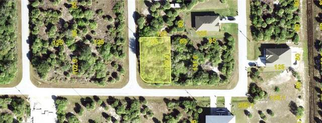 10494 New Brittain Street, Port Charlotte, FL 33981 (MLS #C7432468) :: Griffin Group