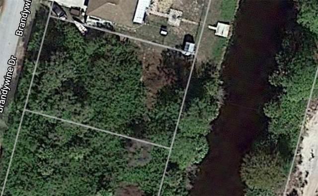 7124 Brandywine Drive, Englewood, FL 34224 (MLS #C7432506) :: Rabell Realty Group