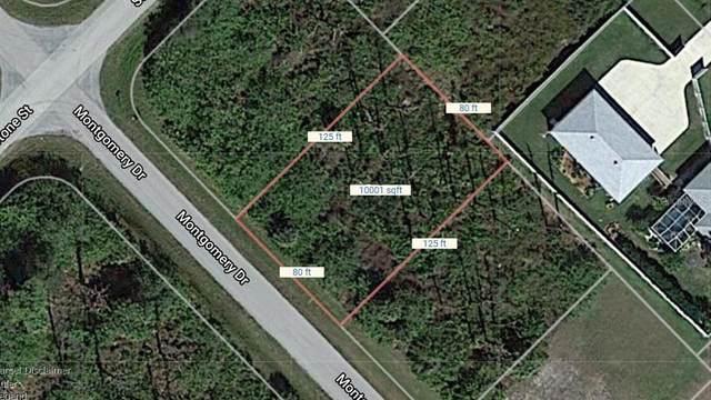 3164 Montgomery Dr, Port Charlotte, FL 33981 (MLS #C7432632) :: Bustamante Real Estate