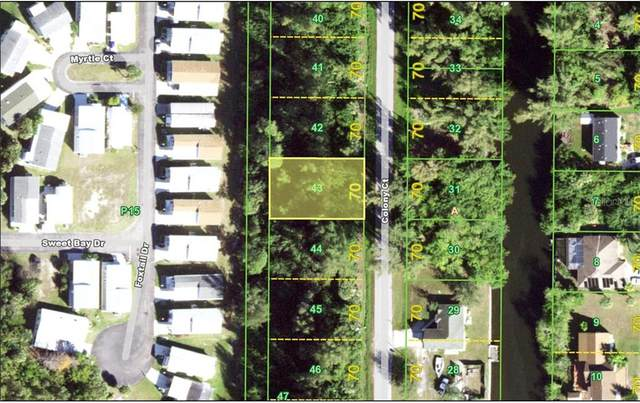 3711 Colony Court, Punta Gorda, FL 33950 (MLS #C7432698) :: Premier Home Experts