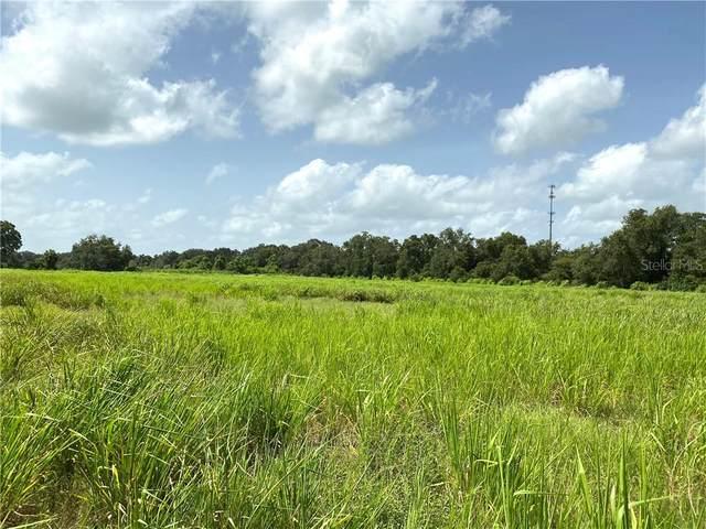 SW Provau Avenue, Arcadia, FL 34266 (MLS #C7432774) :: Young Real Estate