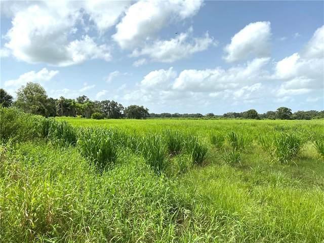 SW Carlton Avenue, Arcadia, FL 34266 (MLS #C7432780) :: Young Real Estate
