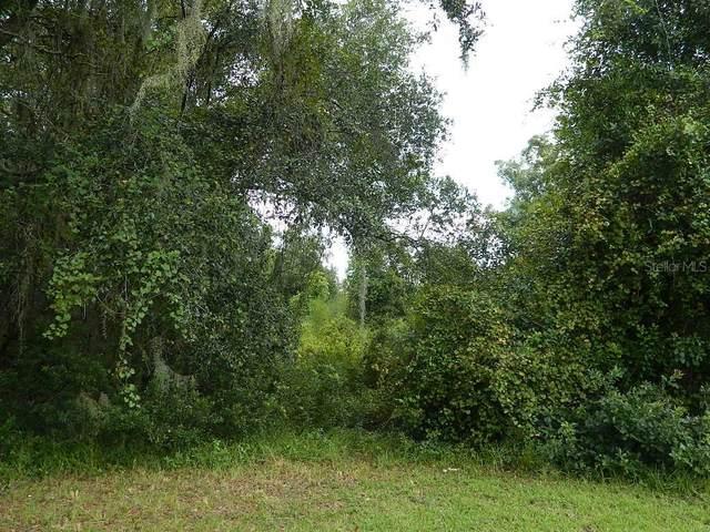 3846 NW Pineapple Street, Arcadia, FL 34266 (MLS #C7432879) :: BuySellLiveFlorida.com