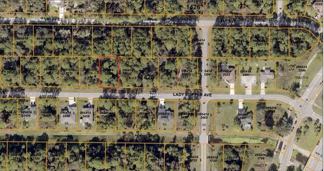 0000 Lady Slipper Avenue, North Port, FL 34291 (MLS #C7433089) :: Lockhart & Walseth Team, Realtors