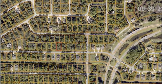 Lady Slipper Avenue, North Port, FL 34291 (MLS #C7433093) :: Lockhart & Walseth Team, Realtors