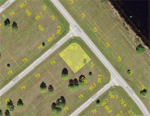 12330 Corbina Court, Placida, FL 33946 (MLS #C7433106) :: Zarghami Group