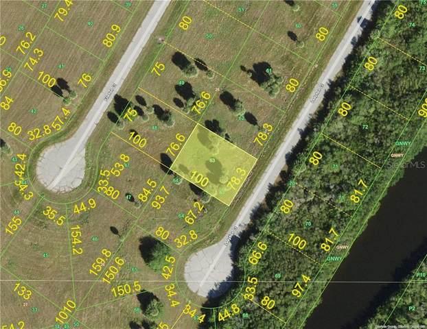 12521 Ladyfish Court, Placida, FL 33946 (MLS #C7433109) :: Zarghami Group