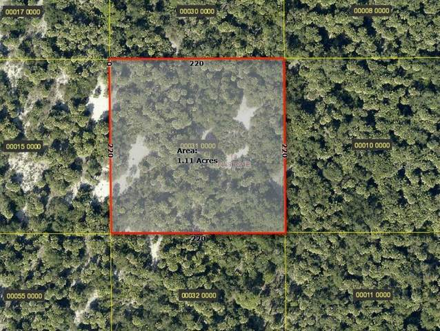No Street, Captiva, FL 33924 (MLS #C7434184) :: Young Real Estate