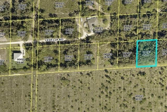 6045 Cedelia Road, Bokeelia, FL 33922 (MLS #C7434194) :: Vacasa Real Estate
