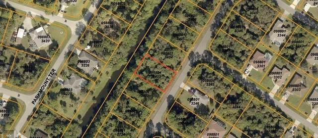 Petunia Terrace, North Port, FL 34286 (MLS #C7434519) :: Pepine Realty