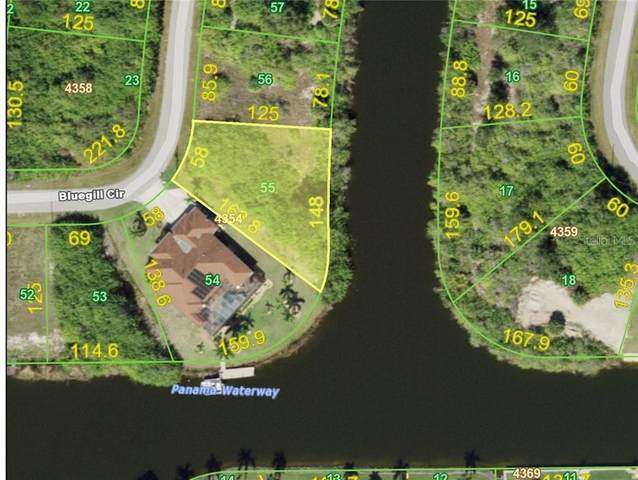 9434 Bluegill Circle, Port Charlotte, FL 33981 (MLS #C7434558) :: Griffin Group