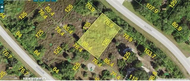 7331 David Boulevard, Port Charlotte, FL 33981 (MLS #C7434662) :: New Home Partners