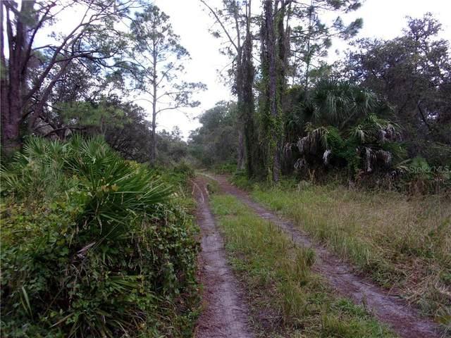 33569 Omega Lane, Punta Gorda, FL 33982 (MLS #C7434956) :: Team Borham at Keller Williams Realty