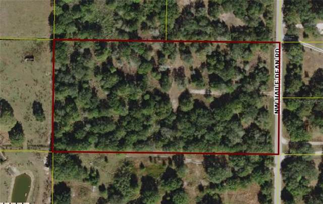 2347 NW Haile Dean Road, Arcadia, FL 34266 (MLS #C7434982) :: Griffin Group