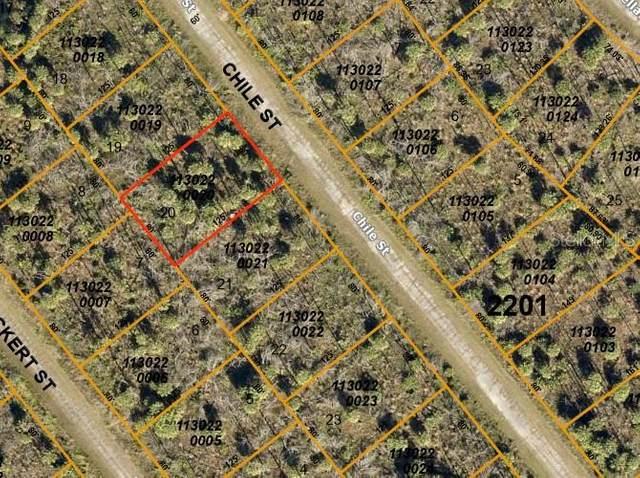 Chile Street, North Port, FL 34288 (MLS #C7435055) :: Real Estate Chicks