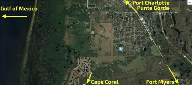 27180 Earthnut Drive, Punta Gorda, FL 33955 (MLS #C7435059) :: Griffin Group