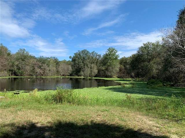 7912 SW Horse Creek Road, Arcadia, FL 34266 (MLS #C7435177) :: Young Real Estate