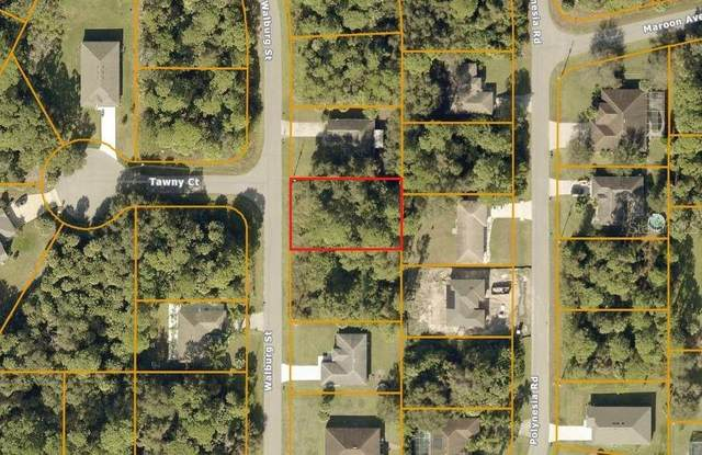 Walburg Street, North Port, FL 34288 (MLS #C7435185) :: Griffin Group