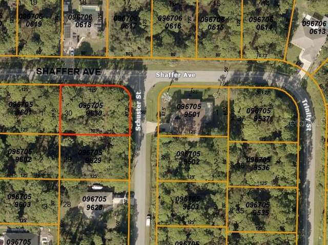 L30 Shaffer Avenue, North Port, FL 34291 (MLS #C7435274) :: Cartwright Realty