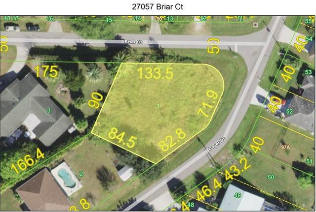 27057 Briar Court, Punta Gorda, FL 33983 (MLS #C7435411) :: Carmena and Associates Realty Group