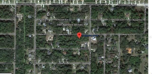 17113 Malta Avenue, Port Charlotte, FL 33954 (MLS #C7435432) :: Griffin Group