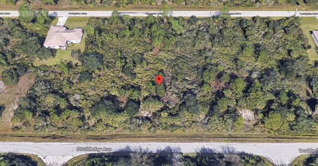 13132 Doubleday Avenue, Port Charlotte, FL 33953 (MLS #C7435698) :: Sarasota Home Specialists