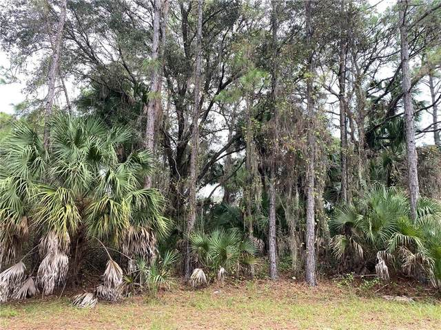 Nabble Lane, North Port, FL 34288 (MLS #C7435719) :: Carmena and Associates Realty Group