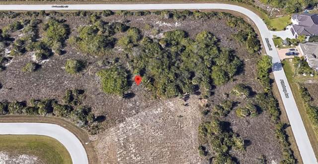 10685 Rainsville Street, Port Charlotte, FL 33981 (MLS #C7435775) :: Carmena and Associates Realty Group