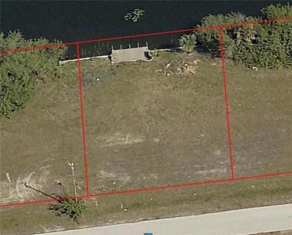 339 NE 19TH Terrace, Cape Coral, FL 33909 (MLS #C7435809) :: Baird Realty Group