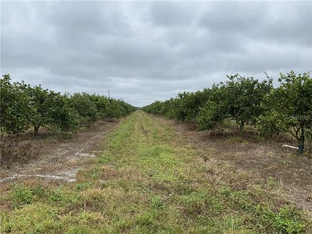 SE Swinney Road, Arcadia, FL 34266 (MLS #C7435865) :: Baird Realty Group