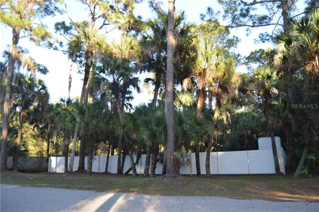 416 Sally Street, Port Charlotte, FL 33954 (MLS #C7436118) :: Pepine Realty