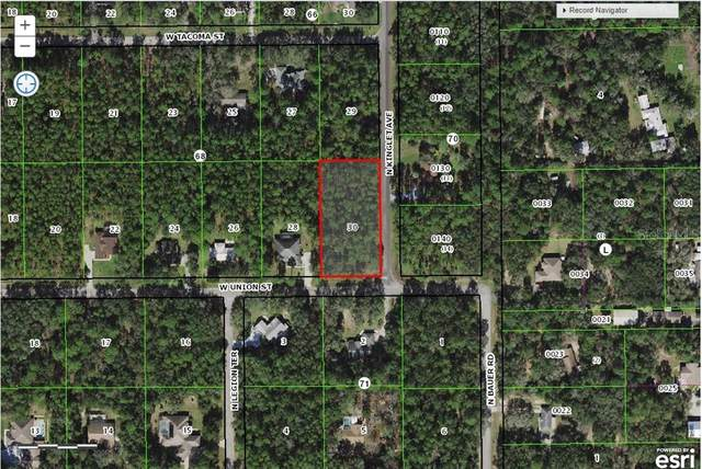 1079 W Union Street, Hernando, FL 34442 (MLS #C7436152) :: Premier Home Experts