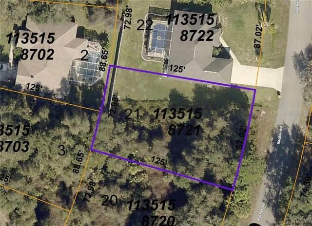 Kacher Road, North Port, FL 34288 (MLS #C7436474) :: Griffin Group