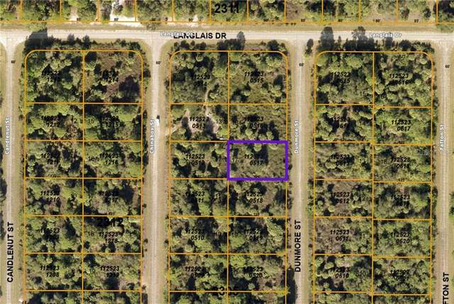 Dunmore Street, North Port, FL 34288 (MLS #C7436478) :: Griffin Group