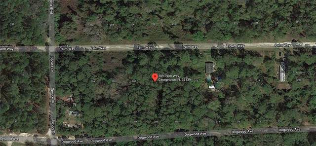 209 Palm Way, Georgetown, FL 32139 (MLS #C7436752) :: Griffin Group