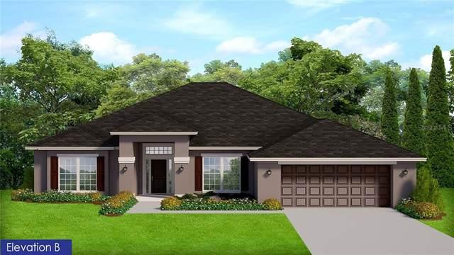46 Algonquin Street, Port Charlotte, FL 33954 (MLS #C7436959) :: Premier Home Experts