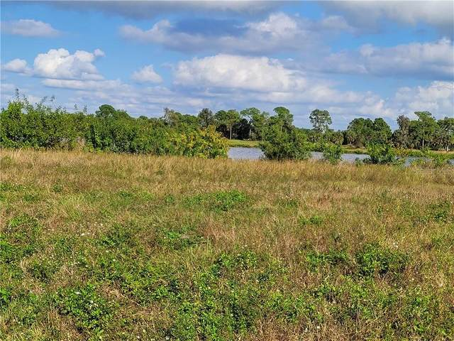 12331 Chub Way, Placida, FL 33946 (MLS #C7437025) :: The BRC Group, LLC