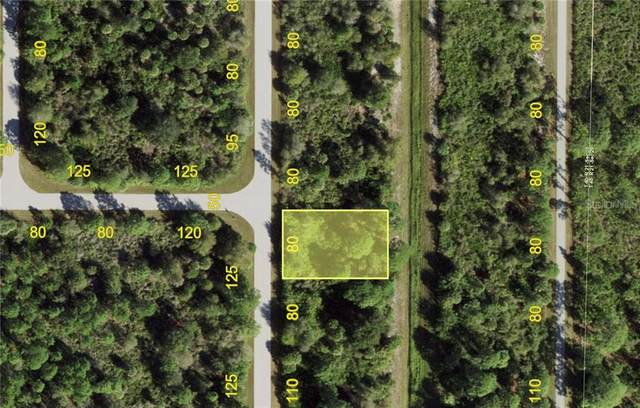 4412 Schneider Street, Port Charlotte, FL 33981 (MLS #C7437278) :: Sarasota Property Group at NextHome Excellence