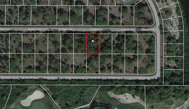 13585 Suribachi Avenue, Port Charlotte, FL 33953 (MLS #C7437321) :: Premier Home Experts
