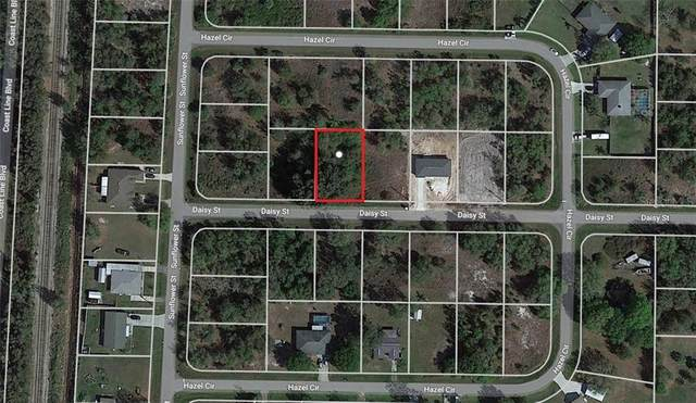 29328 Daisy Street, Punta Gorda, FL 33982 (MLS #C7437336) :: Baird Realty Group