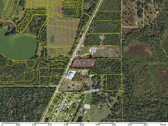 11480 SW County Road 769, Arcadia, FL 34269 (MLS #C7437600) :: EXIT King Realty